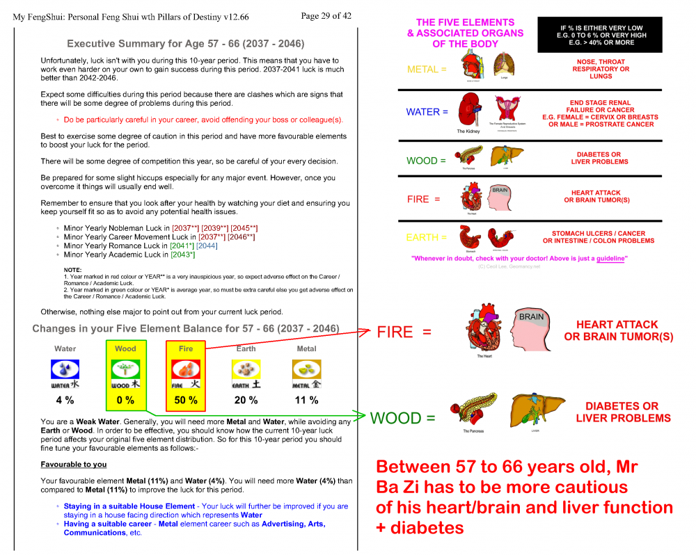 Mr Ba Zi Part2_29 extra care heart n brain.png