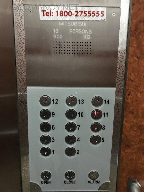 1FEBE938-8A3E-44D9-A64C-BE6D77B101A8.thumb.jpeg.b788d86350ec676383e7ece118b3677c.jpeg