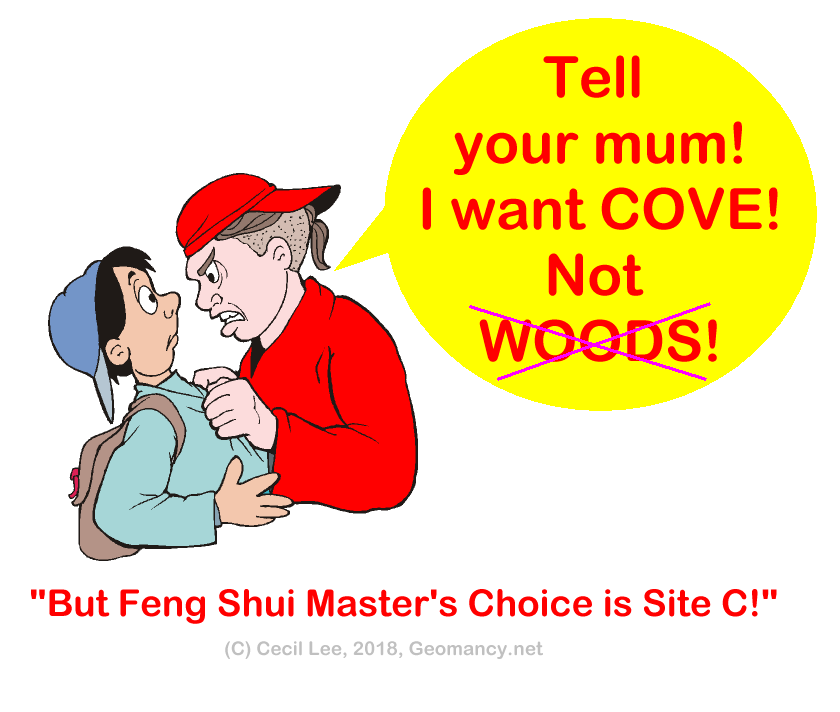 Punggol Point Cove vs Woods or is it site C.png